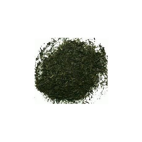 Té Verde Gyokuro hikari
